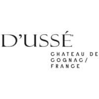D'USSE Chateau De Cognac France